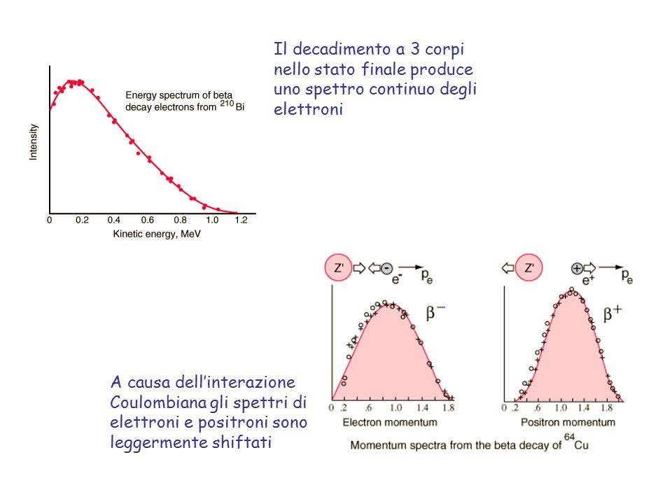 Il decadimento a 3 corpi nello stato finale produce uno spettro continuo degli elettroni A causa dell'interazione Coulombiana gli spettri di elettroni