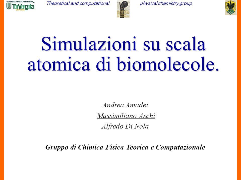 Theoretical and computationalphysical chemistry group 1 Simulazioni su scala atomica di biomolecole. Andrea Amadei Massimiliano Aschi Alfredo Di Nola