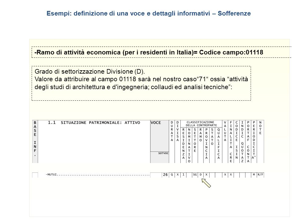 9 -Ramo di attività economica (per i residenti in Italia)= Codice campo:01118 Grado di settorizzazione Divisione (D). Valore da attribuire al campo 01