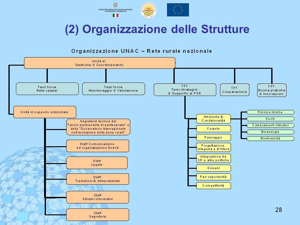 28 (2) Organizzazione delle Strutture
