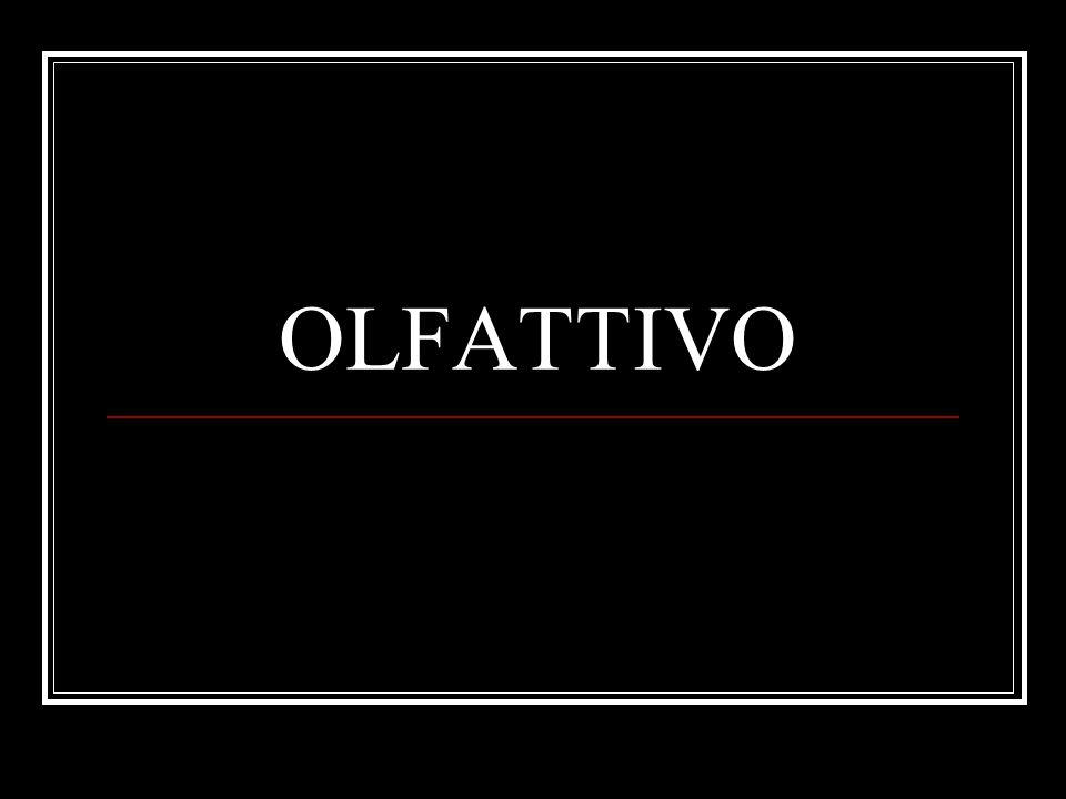 OLFATTIVO