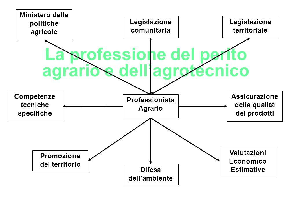 La professione del perito agrario e dell'agrotecnico Professionista Agrario Competenze tecniche specifiche Valutazioni Economico Estimative Ministero