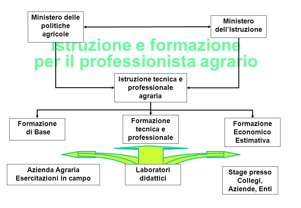 Istruzione e formazione per il professionista agrario Ministero delle politiche agricole Ministero dell'Istruzione Istruzione tecnica e professionale