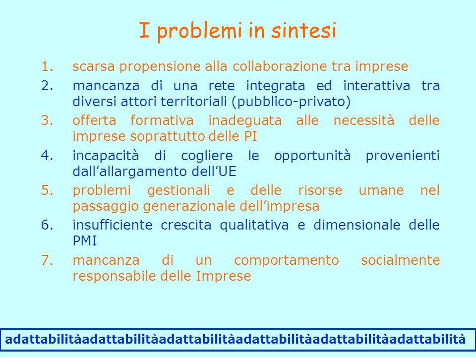 I problemi in sintesi adattabilitàadattabilitàadattabilitàadattabilitàadattabilitàadattabilità 1.scarsa propensione alla collaborazione tra imprese 2.