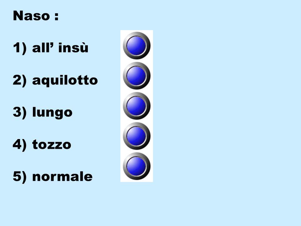 Naso : 1) all' insù 2) aquilotto 3) lungo 4) tozzo 5) normale