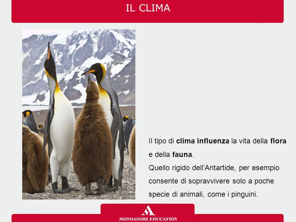 Il tipo di clima influenza la vita della flora e della fauna. Quello rigido dell'Antartide, per esempio consente di sopravvivere solo a poche specie d