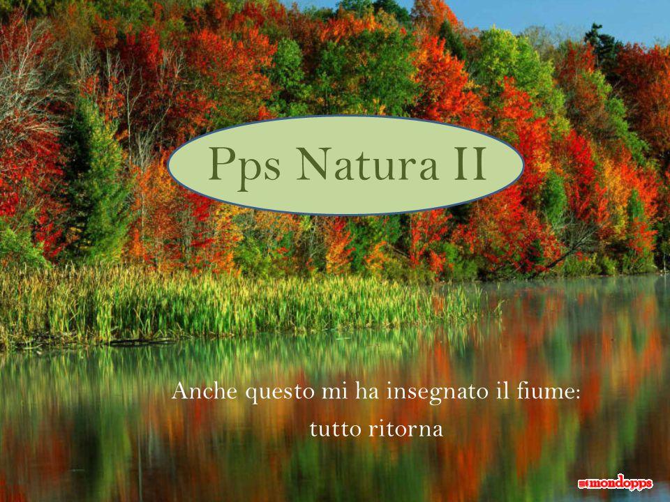 Pps Natura II Anche questo mi ha insegnato il fiume: tutto ritorna