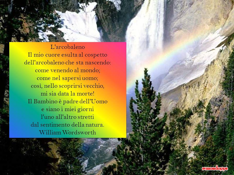 L arcobaleno Il mio cuore esulta al cospetto dell arcobaleno che sta nascendo: come venendo al mondo; come nel sapersi uomo; così, nello scoprirsi vecchio, mi sia data la morte.