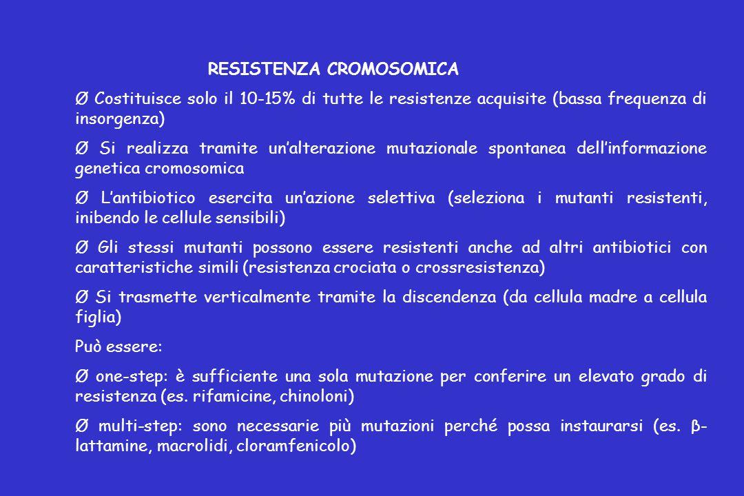 RESISTENZA CROMOSOMICA Ø Costituisce solo il 10-15% di tutte le resistenze acquisite (bassa frequenza di insorgenza) Ø Si realizza tramite un'alterazione mutazionale spontanea dell'informazione genetica cromosomica Ø L'antibiotico esercita un'azione selettiva (seleziona i mutanti resistenti, inibendo le cellule sensibili) Ø Gli stessi mutanti possono essere resistenti anche ad altri antibiotici con caratteristiche simili (resistenza crociata o crossresistenza) Ø Si trasmette verticalmente tramite la discendenza (da cellula madre a cellula figlia) Può essere: Ø one-step: è sufficiente una sola mutazione per conferire un elevato grado di resistenza (es.