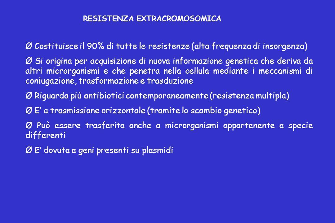 RESISTENZA EXTRACROMOSOMICA Ø Costituisce il 90% di tutte le resistenze (alta frequenza di insorgenza) Ø Si origina per acquisizione di nuova informazione genetica che deriva da altri microrganismi e che penetra nella cellula mediante i meccanismi di coniugazione, trasformazione e trasduzione Ø Riguarda più antibiotici contemporaneamente (resistenza multipla) Ø E' a trasmissione orizzontale (tramite lo scambio genetico) Ø Può essere trasferita anche a microrganismi appartenente a specie differenti Ø E' dovuta a geni presenti su plasmidi