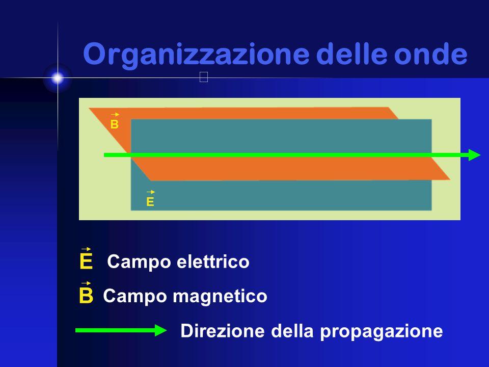 Organizzazione delle onde Organizzazione delle onde E B E Campo elettrico B Campo magnetico Direzione della propagazione