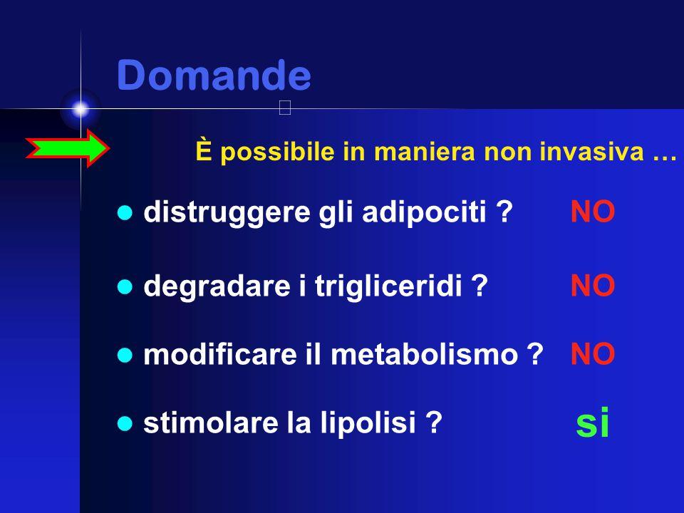 Domande Domande distruggere gli adipociti . NO degradare i trigliceridi .