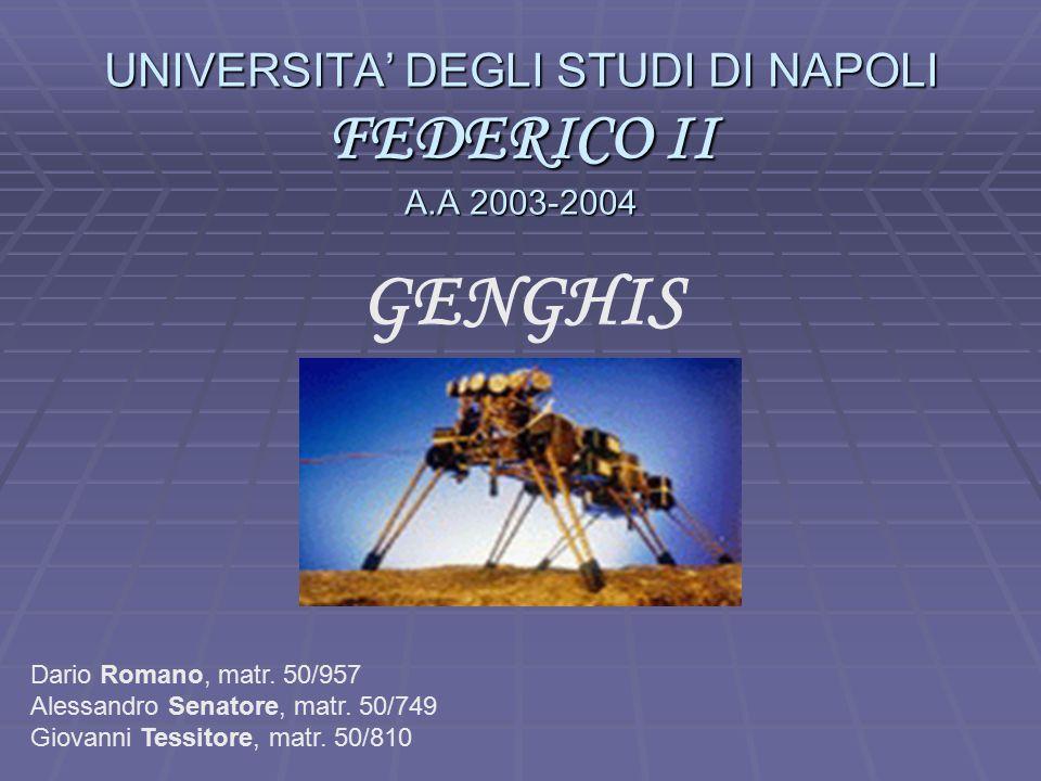 UNIVERSITA' DEGLI STUDI DI NAPOLI FEDERICO II A.A 2003-2004 GENGHIS Dario Romano, matr.