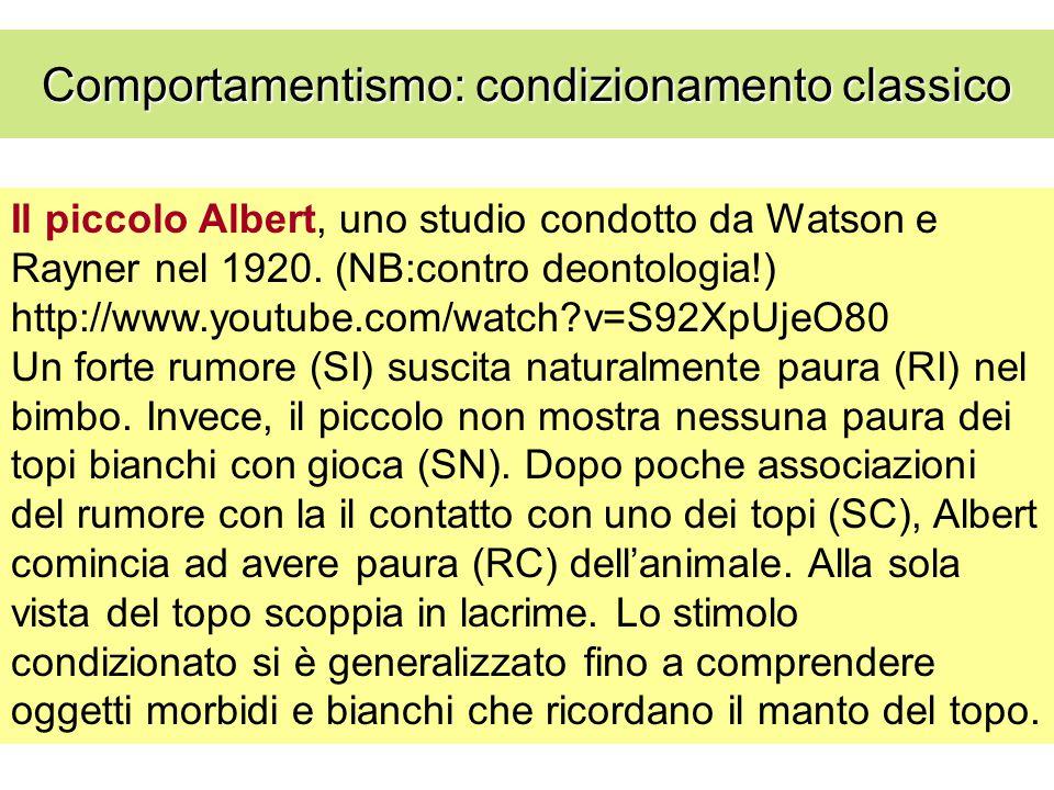 Il piccolo Albert, uno studio condotto da Watson e Rayner nel 1920. (NB:contro deontologia!) http://www.youtube.com/watch?v=S92XpUjeO80 Un forte rumor