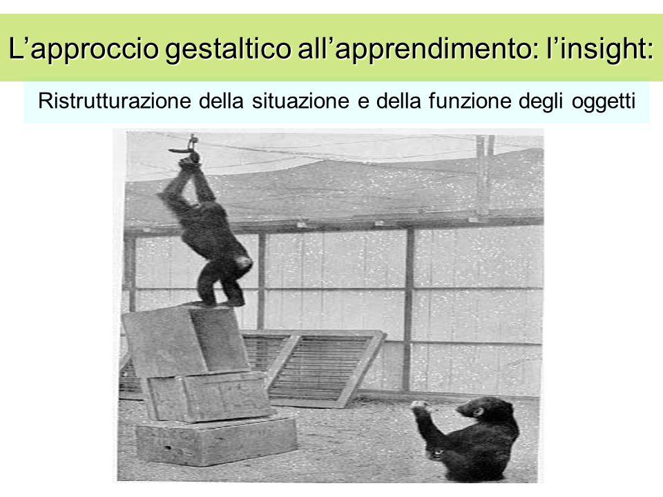 Ristrutturazione della situazione e della funzione degli oggetti L'approccio gestaltico all'apprendimento: l'insight: