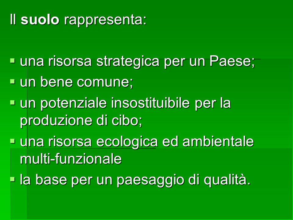 Il suolo rappresenta:  una risorsa strategica per un Paese;  un bene comune;  un potenziale insostituibile per la produzione di cibo;  una risorsa ecologica ed ambientale multi-funzionale  la base per un paesaggio di qualità.