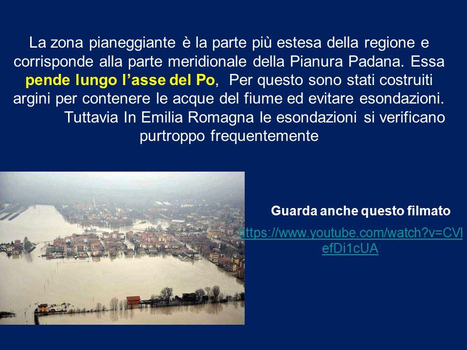 Le Valli di Comacchio sono una vasta zona umida situata in Emilia-Romagna, tra le province di Ferrara e Ravenna.