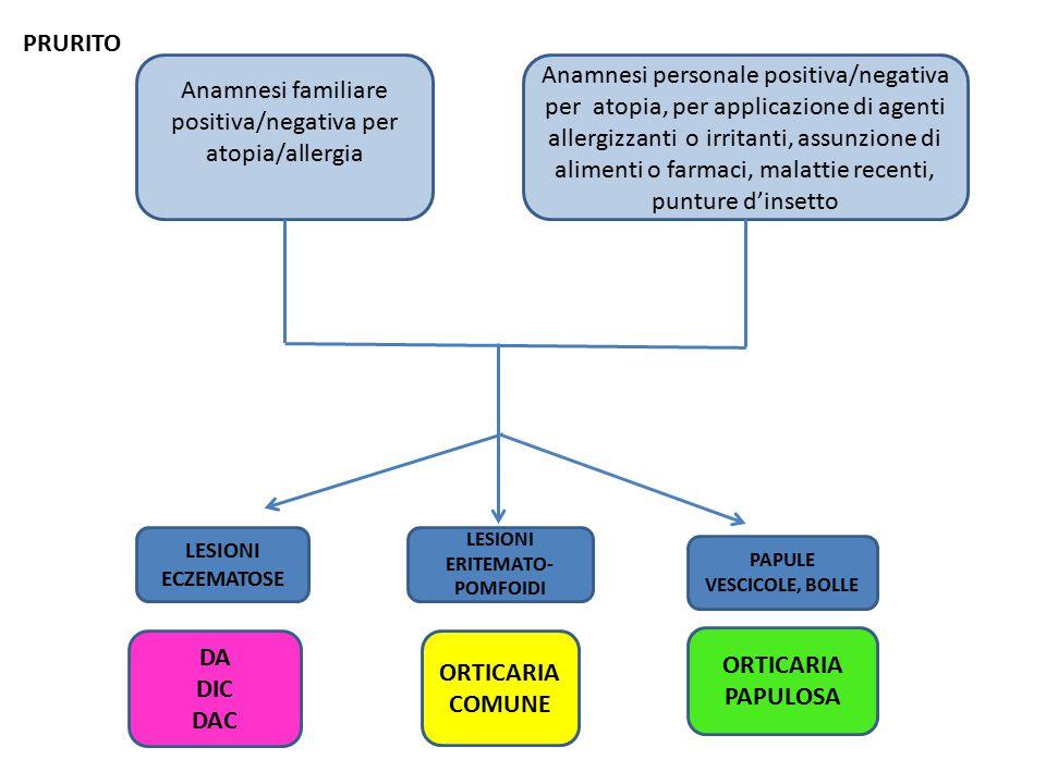 Anamnesi familiare positiva/negativa per atopia/allergia Anamnesi personale positiva/negativa per atopia, per applicazione di agenti allergizzanti o irritanti, assunzione di alimenti o farmaci, malattie recenti, punture d'insetto DA DIC DAC ORTICARIA COMUNE ORTICARIA PAPULOSA LESIONI ECZEMATOSE LESIONI ERITEMATO- POMFOIDI PAPULE VESCICOLE, BOLLE PRURITO