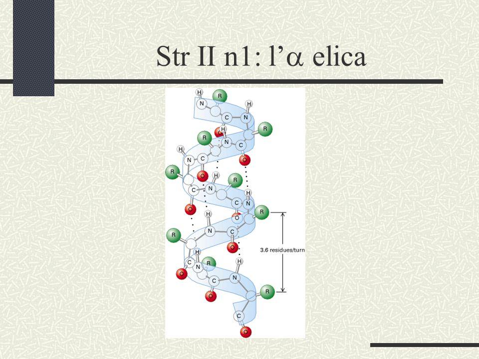 Str II n2: i foglietti 