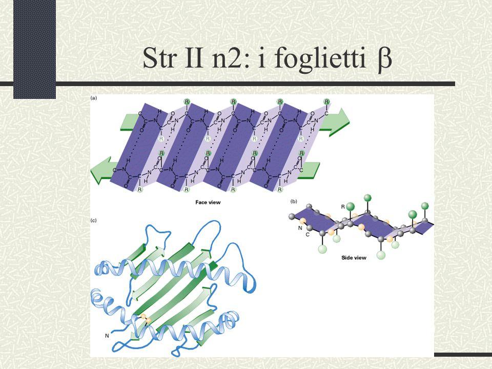 Le interazioni tra nucleotidi Legami Idrogeno =legami deboli
