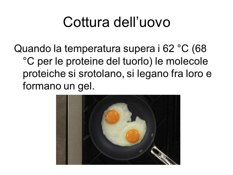 Cottura a freddo dell'uovo Anche l'aggiunta di ALCOL all'albume e al tuorlo d'uovo produce la denaturazione delle proteine.