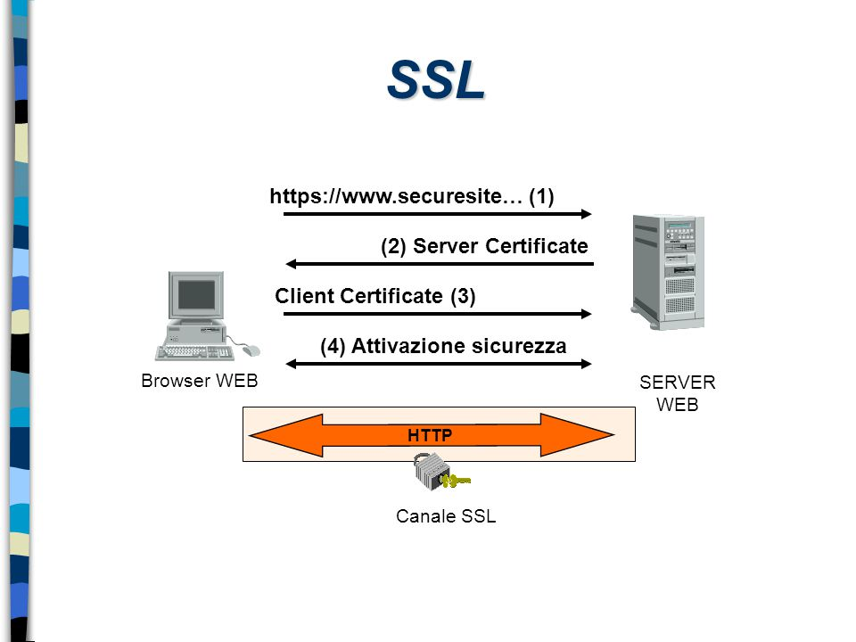 SSL SERVER WEB Browser WEB https://www.securesite… (1) (2) Server Certificate Client Certificate (3) (4) Attivazione sicurezza Canale SSL HTTP