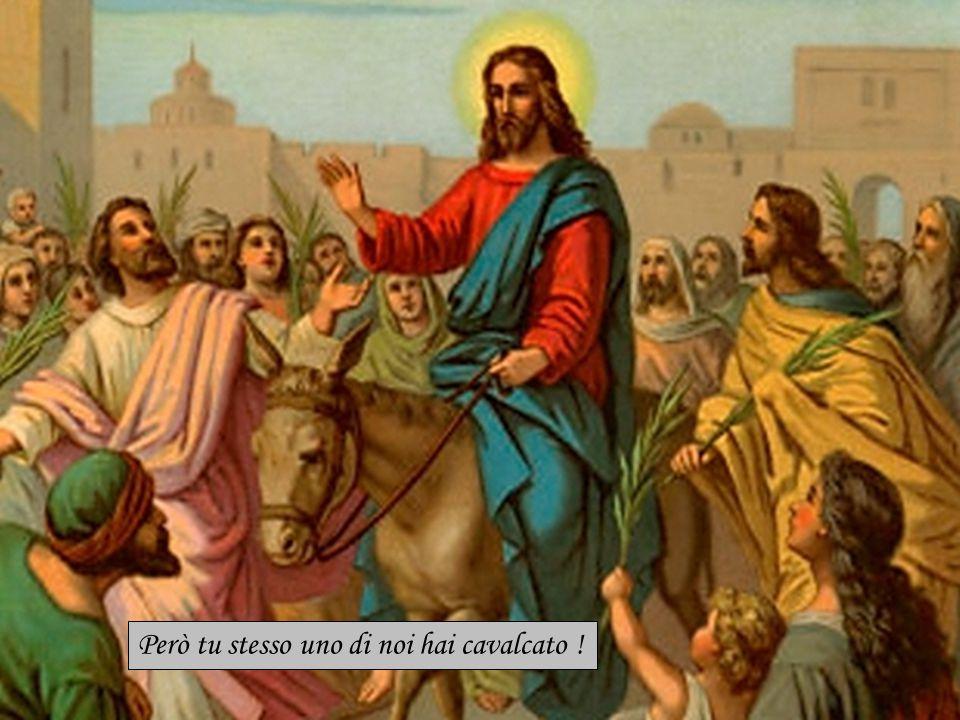 Però il grande Omero ci ha cantati in versi sublimi