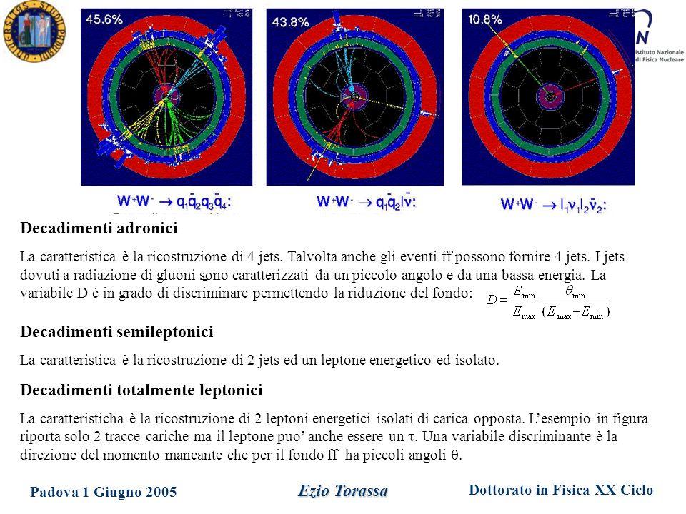Dottorato in Fisica XX Ciclo Padova 1 Giugno 2005 Ezio Torassa Decadimenti adronici La caratteristica è la ricostruzione di 4 jets. Talvolta anche gli