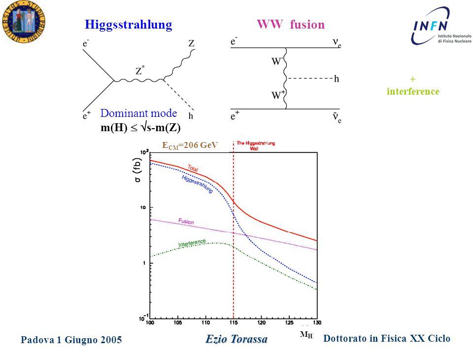 Dottorato in Fisica XX Ciclo Padova 1 Giugno 2005 Ezio Torassa HiggsstrahlungWW fusion Dominant mode m(H)   s-m(Z) + interference MHMH E CM =206 GeV