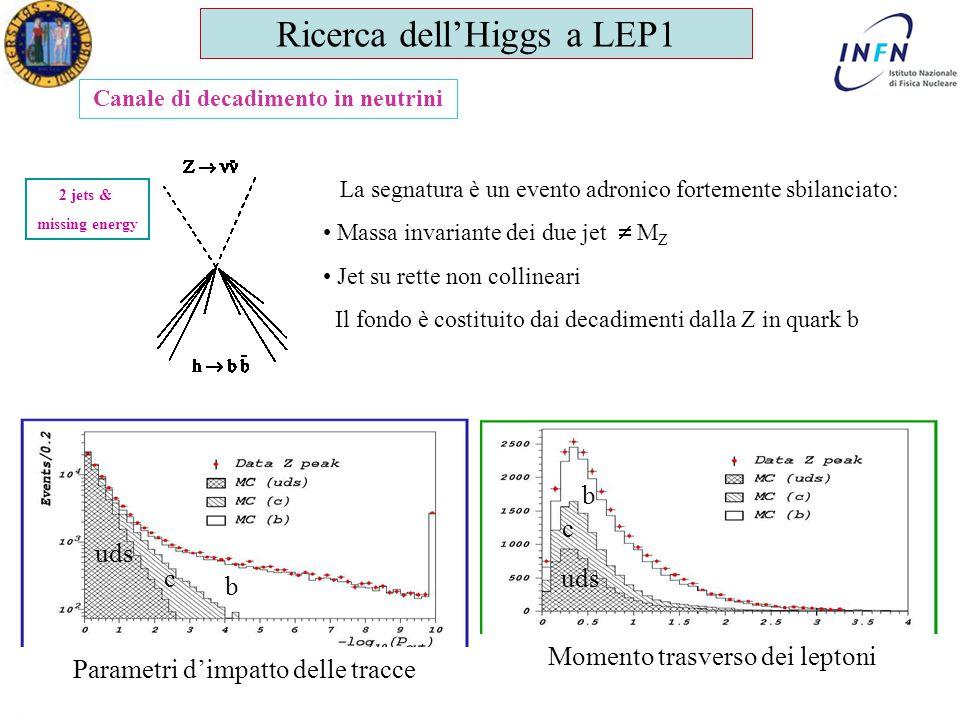 Dottorato in Fisica XX Ciclo Padova 1 Giugno 2005 Ezio Torassa Canale di decadimento in neutrini 2 jets & missing energy La segnatura è un evento adro