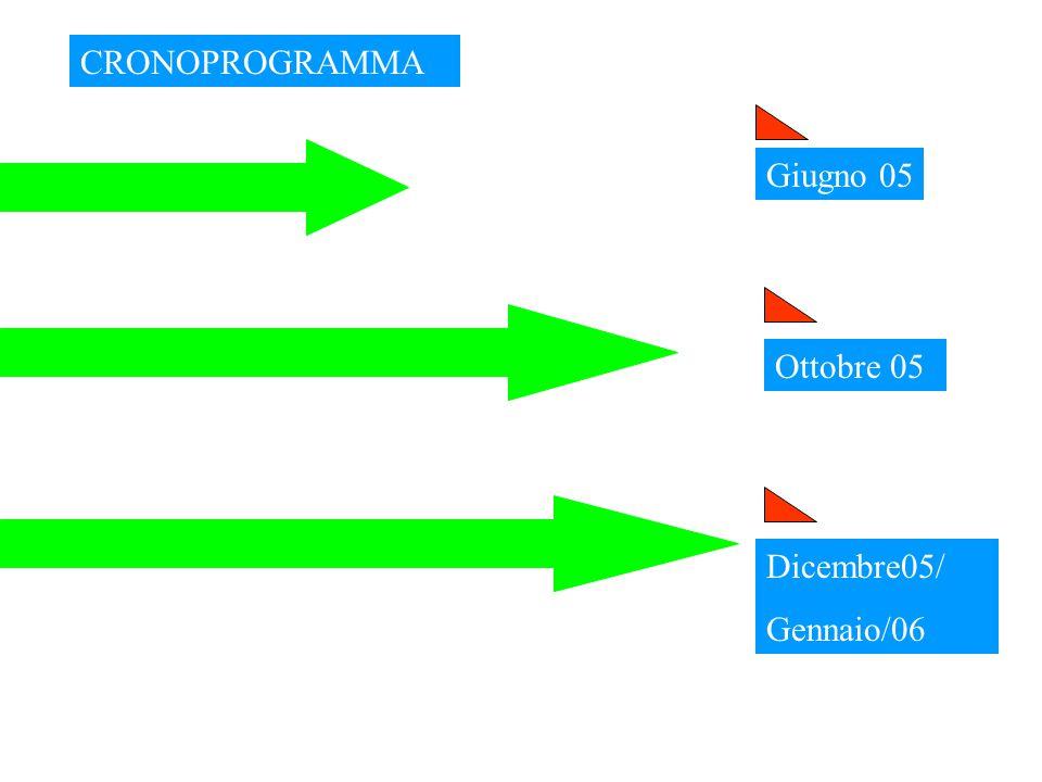 Fine 2000 Processo del Progetto Agenda 21 Locale - Provincia di Piacenza EASW Piacenza Provincia sostenibile nel 2010 Definizione degli obiettivi di sostenibilità Definizione del Piano d'Azione ambientale Metodo : European Awareness Scenario Workshop (EASW), I Gruppi tematici definiscono gli obiettivi di sostenibilità, le azioni ed i soggetti coinvolti nell'attuazione delle azioni.