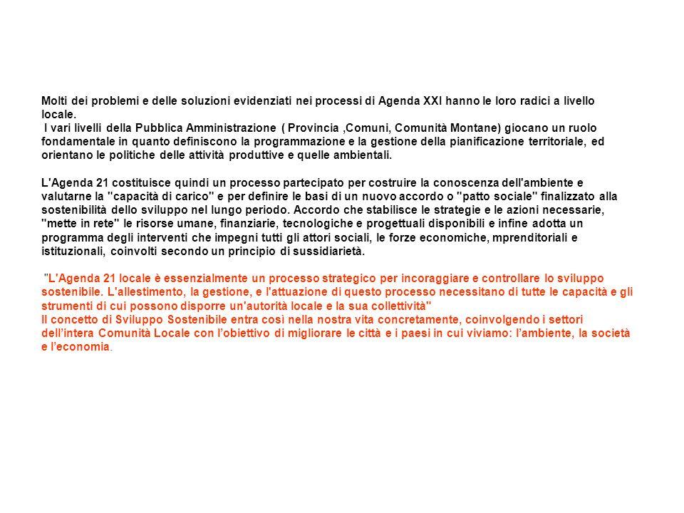 Fine 2000 Processo del Progetto Agenda 21 Locale - Provincia di Piacenza EASW Piacenza Provincia sostenibile nel 2010 E' l'Assemblea plenaria dei partecipanti al percorso di Agenda 21