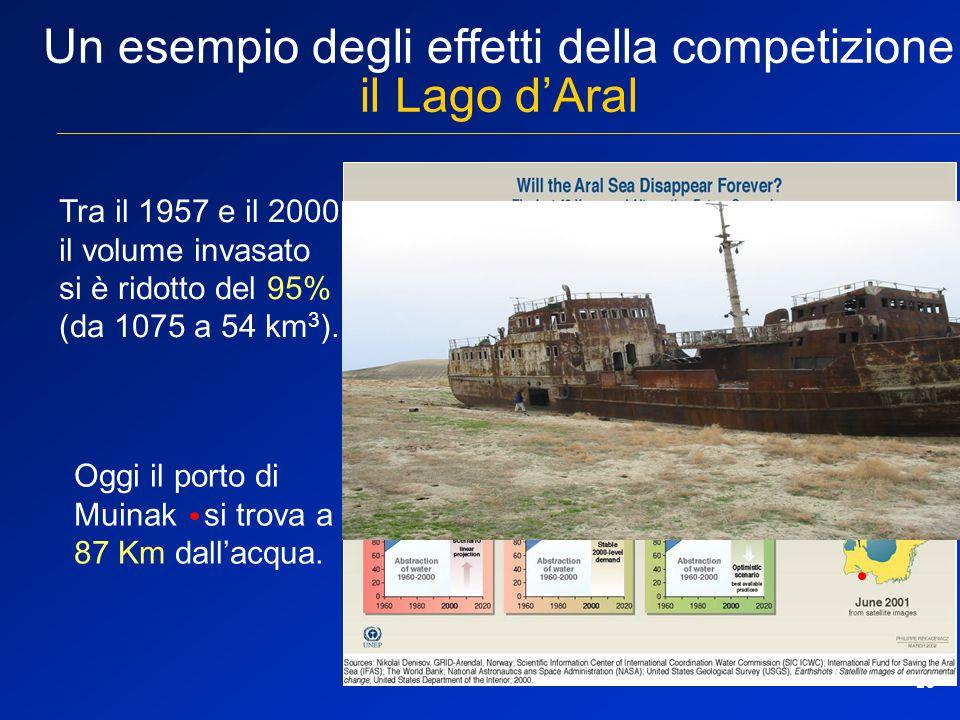 10 Un esempio degli effetti della competizione il Lago d'Aral Tra il 1957 e il 2000 il volume invasato si è ridotto del 95% (da 1075 a 54 km 3 ). Oggi