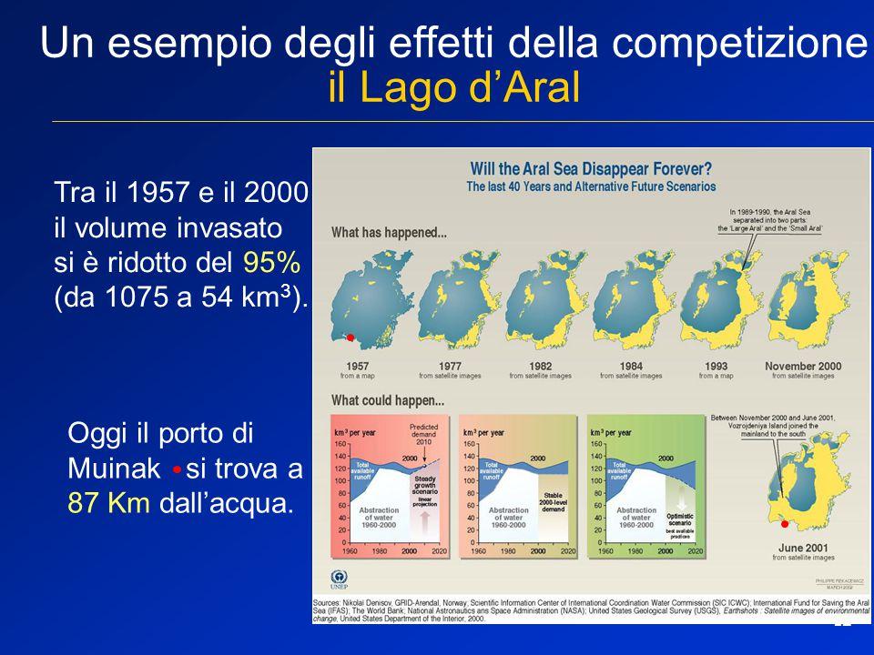 12 Un esempio degli effetti della competizione il Lago d'Aral Tra il 1957 e il 2000 il volume invasato si è ridotto del 95% (da 1075 a 54 km 3 ). Oggi