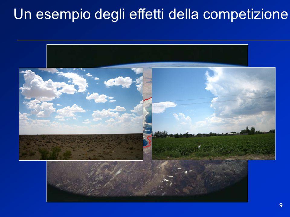 9 Un esempio degli effetti della competizione
