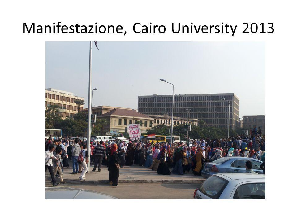 Manifestazione, Cairo University 2013