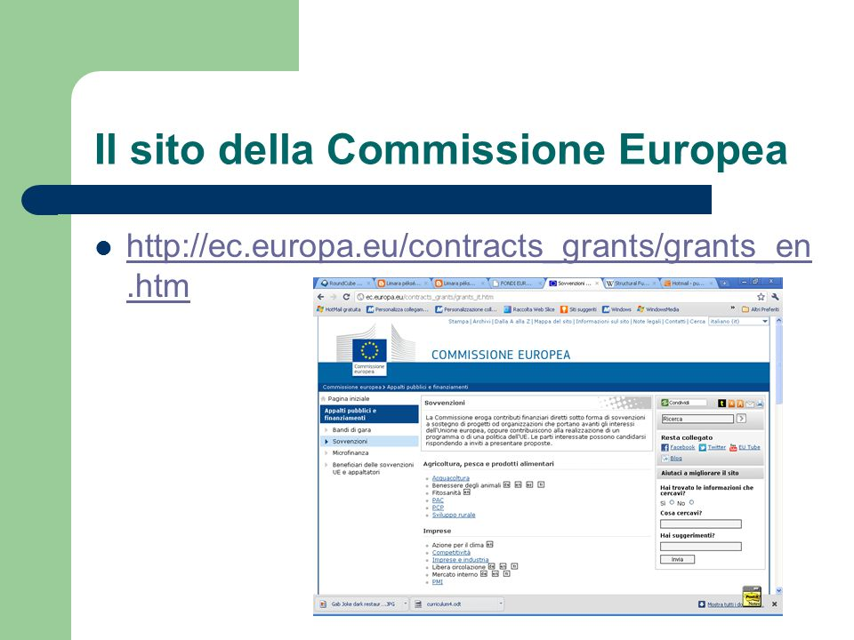 Il sito della Commissione Europea http://ec.europa.eu/contracts_grants/grants_en.htm http://ec.europa.eu/contracts_grants/grants_en.htm