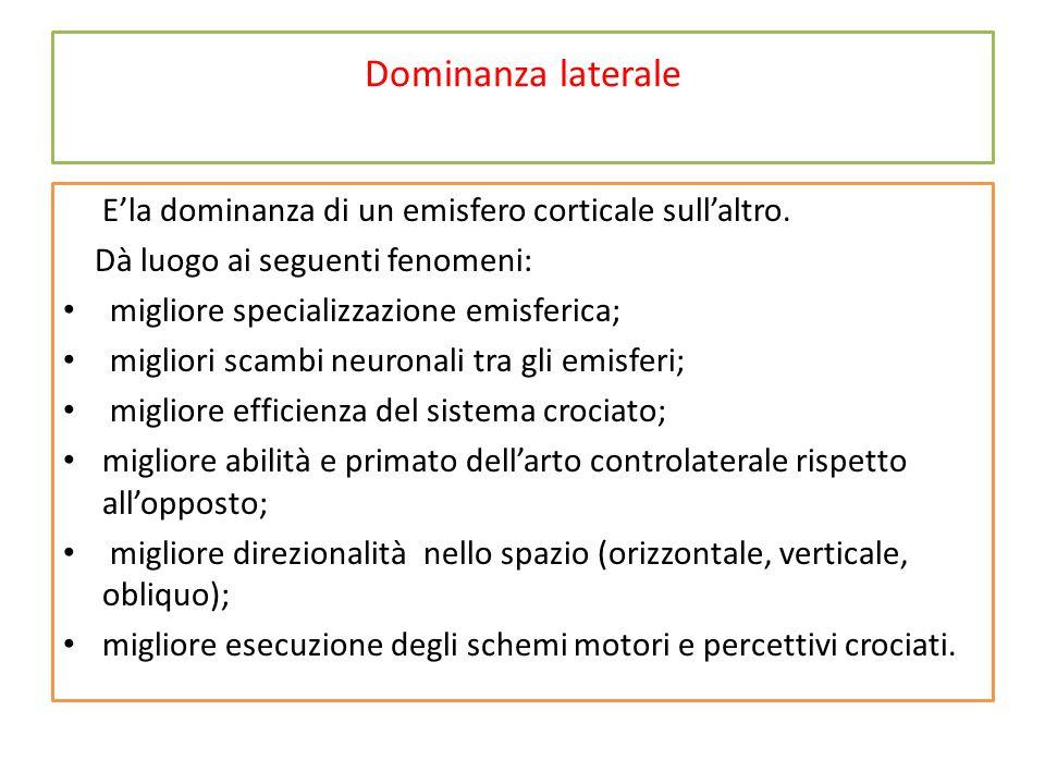 Dominanza laterale E'la dominanza di un emisfero corticale sull'altro. Dà luogo ai seguenti fenomeni: migliore specializzazione emisferica; migliori s
