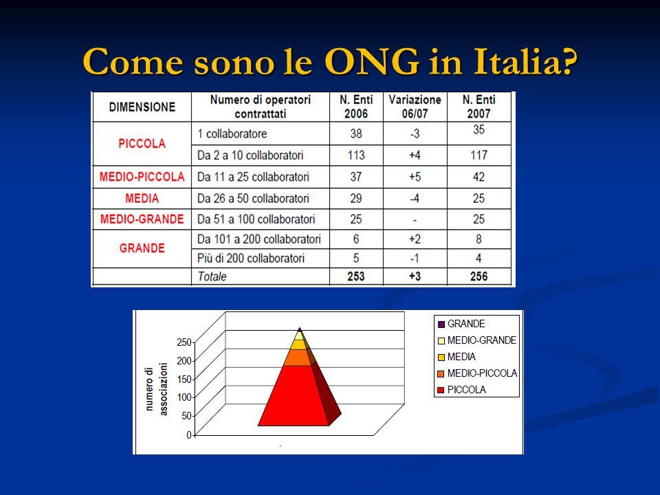 Come sono le ONG in Italia?