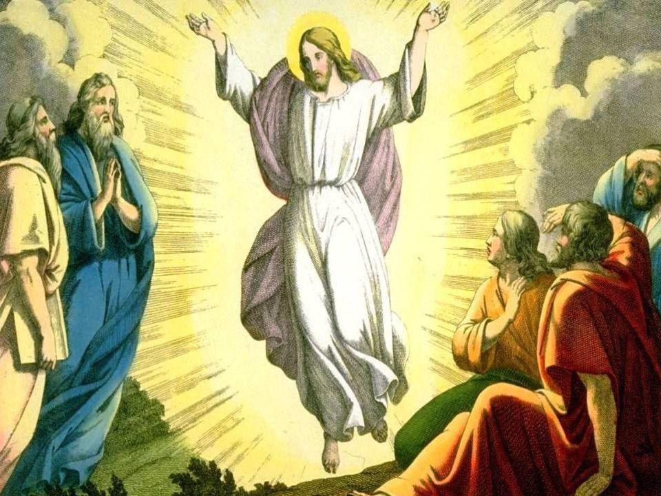 2. Nel mistero della Vocazione meditiamo la chiamata degli Apostoli.