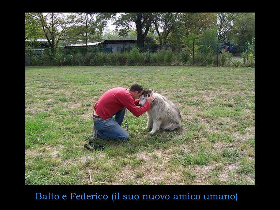 Balto e Federico (il suo nuovo amico umano)
