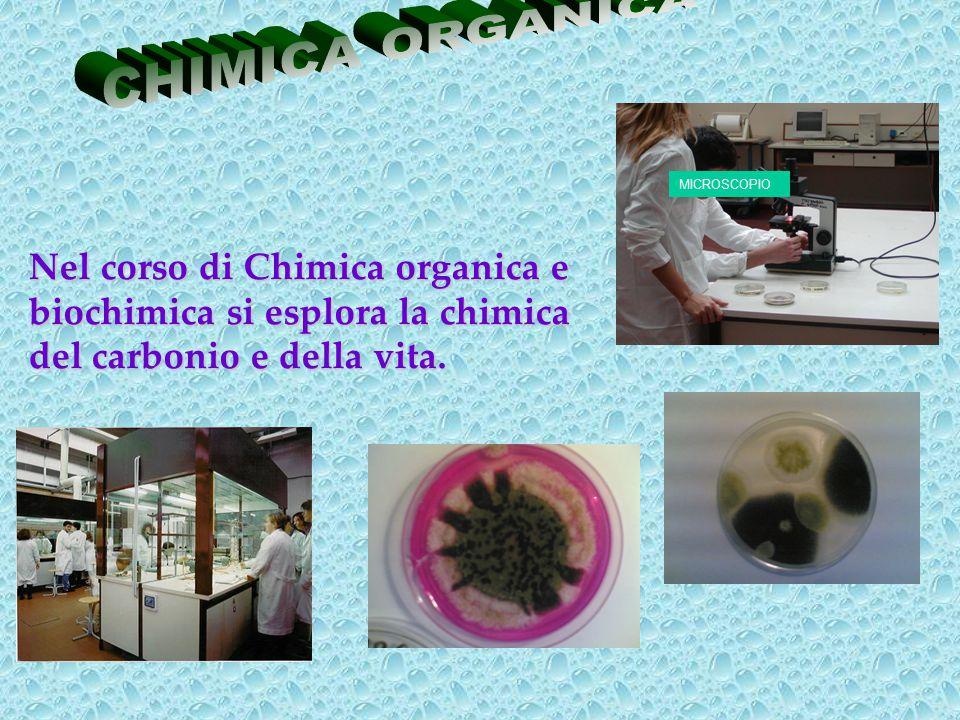 Nel corso di Chimica organica e biochimica si esplora la chimica del carbonio e della vita. MICROSCOPIO