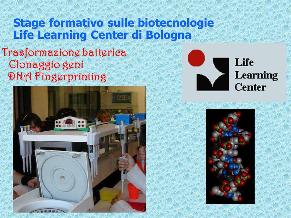 Stage formativo sulle biotecnologie Life Learning Center di Bologna Trasformazione batterica Clonaggio geni DNA Fingerprinting