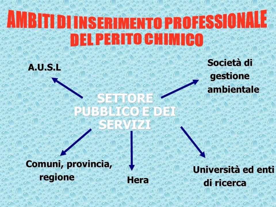 A.U.S.L Società di gestione gestioneambientale Comuni, provincia, regione regione Hera Università ed enti di ricerca di ricerca SETTORE PUBBLICO E DEI SERVIZI