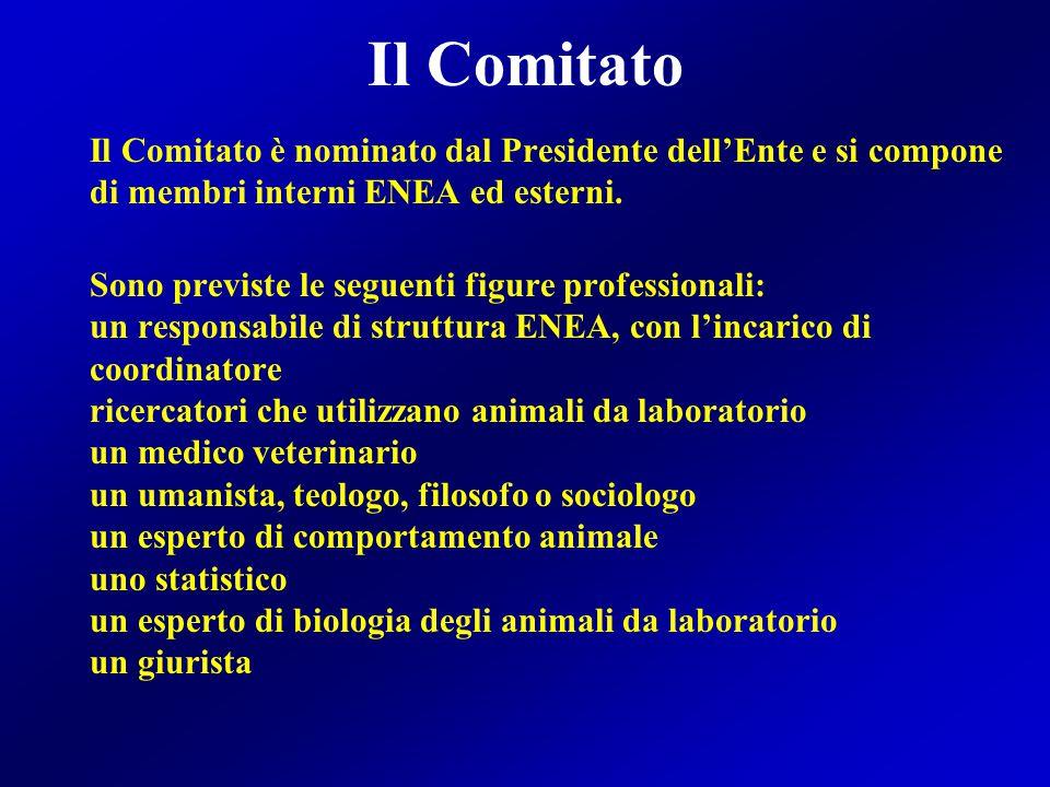 Il Comitato Il Comitato è nominato dal Presidente dell'Ente e si compone di membri interni ENEA ed esterni.