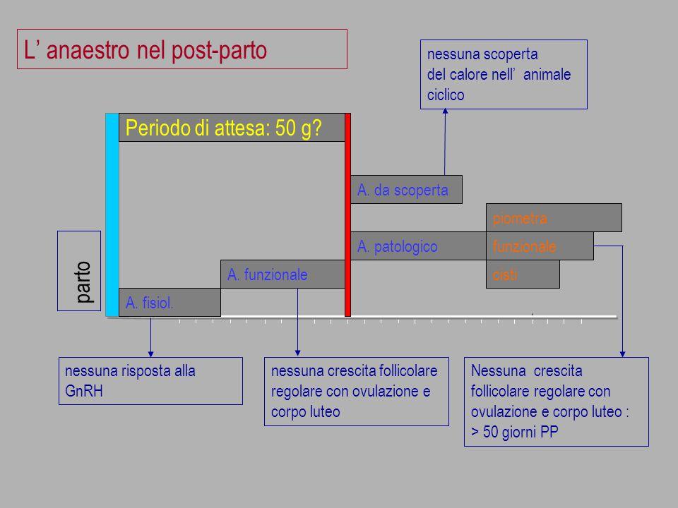Le prostaglandine: approccio individuale
