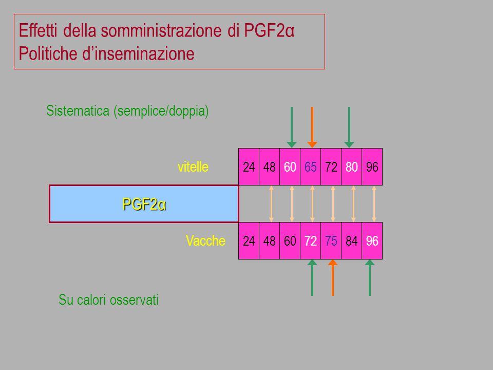 Effetti della somministrazione di PGF2α Politiche d'inseminazione PGF2α 24486065728096 vitelle 24486072758496 Vacche Sistematica (semplice/doppia) Su