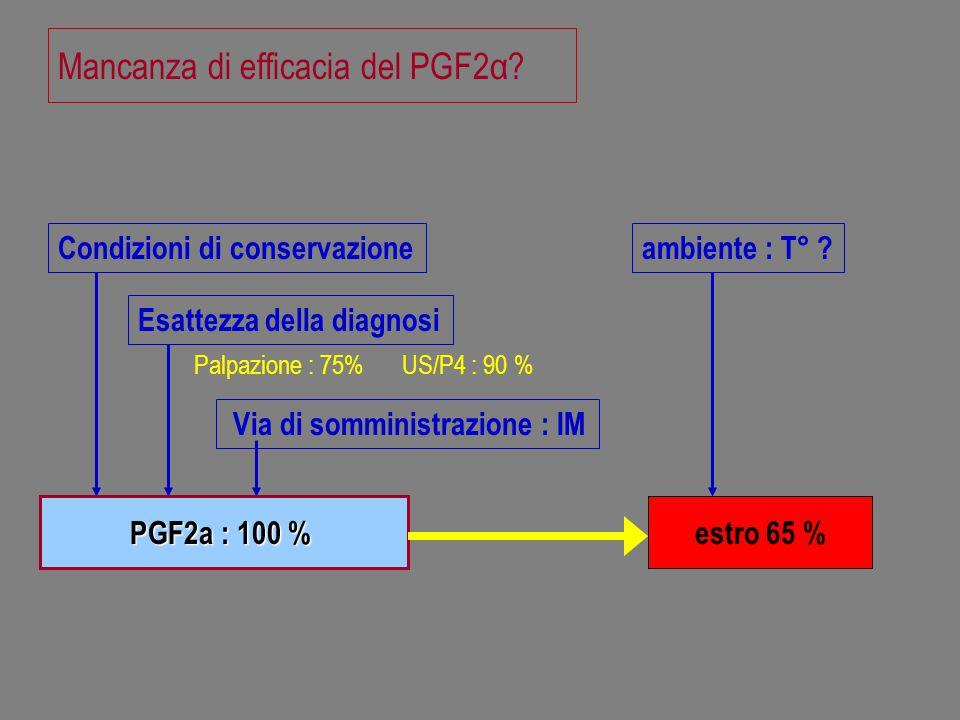 Mancanza di efficacia del PGF2α? PGF2a : 100 % estro 65 % Via di somministrazione : IM Condizioni di conservazione Esattezza della diagnosi ambiente :