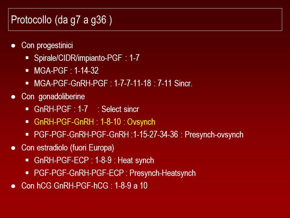 Protocollo (da g7 a g36 ) ● Con progestinici  Spirale/CIDR/impianto-PGF : 1-7  MGA-PGF : 1-14-32  MGA-PGF-GnRH-PGF : 1-7-7-11-18 : 7-11 Sincr. ● Co