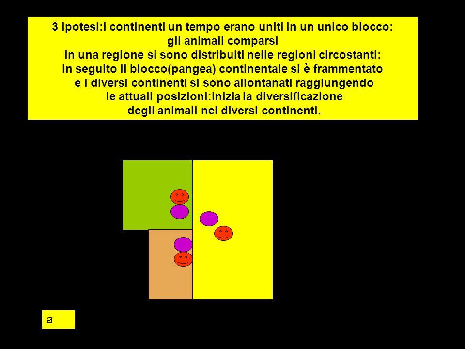 3 ipotesi:i continenti un tempo erano uniti in un unico blocco: gli animali comparsi in una regione si sono distribuiti nelle regioni circostanti: in